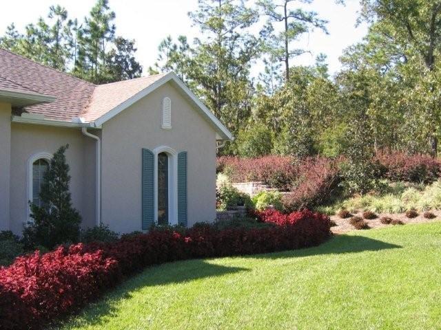 Florida landscaping photos florida first landscape for Landscape design company